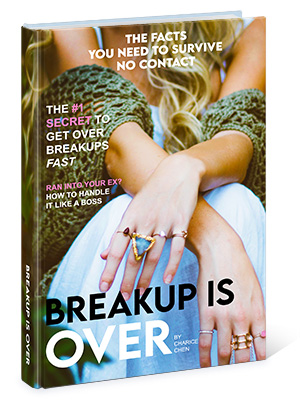 Breakup Is Over Book